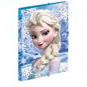 Carpeta Frozen Disney Heart gomas