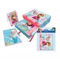 Set diario marco y album Frozen Disney